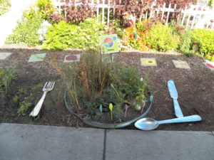 My Plate Garden