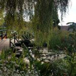 4-H Childrens Garden Monet Bridge